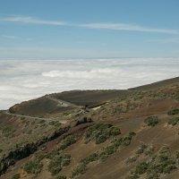 Над облаками :: евгений васильев