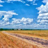 Степные дороги... :: Вахтанг Хантадзе