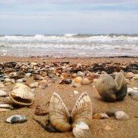 Азовское море :: андрей иванов