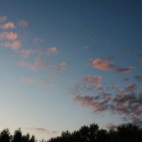 розовые облака :: Евгений