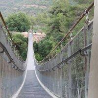 Подвесной мост в парке Нешер в Хайфе :: Герович Лилия