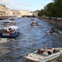 Пробки на воде :: Дарина