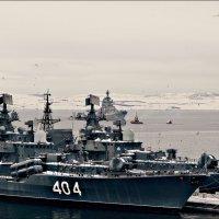 Чайки и корабли... :: Кай-8 (Ярослав) Забелин