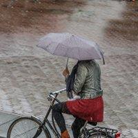 Под дождём :: Владимир Леликов