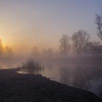 Весна просыпается :: Сергей Корнев