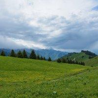 горы - зеленая долина :: Горный турист Иван Иванов