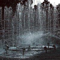вода. :: ЕВГЕНИЯ