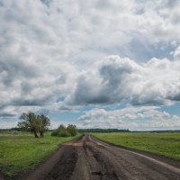 Пейзаж :: Evgenija Enot