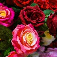Цветочный рай! :: Ирина Антоновна