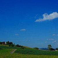В дороге... Австрийский пейзаж... :: Galina Dzubina