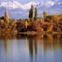 Осень на озере :: Ирина Масальская