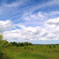 Вальс облаков пророчит нам хорошую погоду.. :: Андрей Заломленков