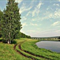 Летний пейзаж :: Leonid Rutov