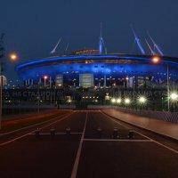 Стадион :: Наталья Левина