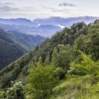 Район каньона реки Морача :: Владимир Новиков
