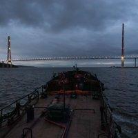 Владивосток. Русский мост :: Сергей Лякишев