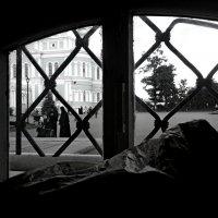 Из окна... :: Елена /