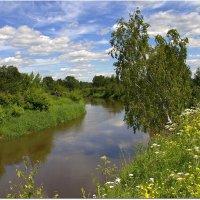 Березка над рекой :: Вячеслав Минаев