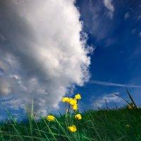 целуясь с облаками... :: Svetlana AS