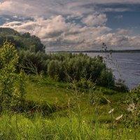 После ливня :: Владимир Макаров