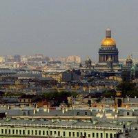 Петербург с высоты :: Ирина Фирсова