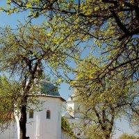 Свенский монастырь :: Татьяна Шумова