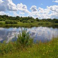 Река Западная Двина в городе Западная Двина... :: Владимир Павлов