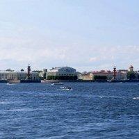 Панорама Питера :: Вера Щукина