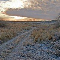 Морозное утро :: Дубовцев Евгений