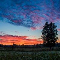 горело небо на закате... :: Светлана