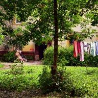 Старые Мытищинские дворики :: Елена Строганова