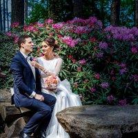 Прогулка в парке. A там одни свадьбы.III :: Arturas Barysas