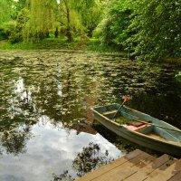 Старый пруд :: НАТАЛИ natali-t8