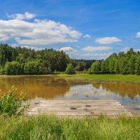 Летним днём у пруда :: Waldemar .