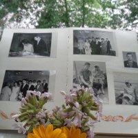 Листая свадебный альбом 1964 года :: Алекс Аро Аро