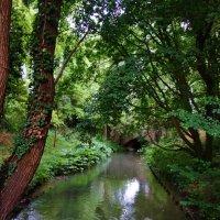 Аугсбург — город каналов.... :: Galina Dzubina