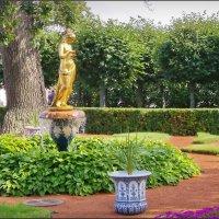 Монплезирский сад :: lady v.ekaterina