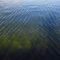 Вода, вода, кругом вода :: Андрей Лукьянов