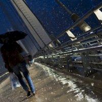 Дождь и снег. :: Александр Крайчик