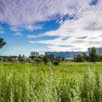 Вид на город :: Юрий Стародубцев
