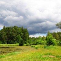 Прохладное лето :: Андрей Снегерёв