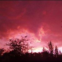 Цветной закат! :: Надежда