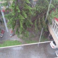 дождливое лето :: Вадим Бурмистров