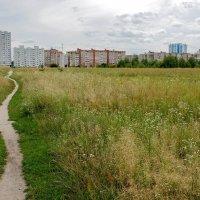 Пейзаж из городской окраины :: Сергей Тарабара