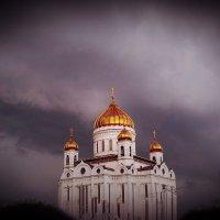В вечерней дымке :: Виктория Нефедова