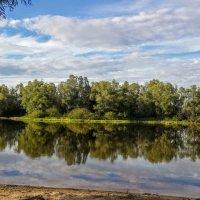 На реке Десна :: Антонина Ягущина