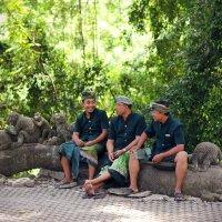 Смотрители в священном лесу обезьян :: Юлия Ходаковская
