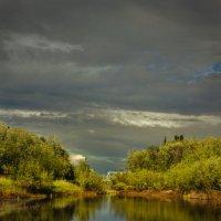 лесное озерцо :: Денис Сидельников