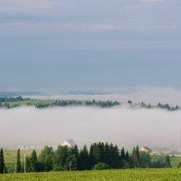 «Утренний туман» :: Александр Гладких