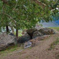 Сад камней :: val-isaew2010 Валерий Исаев